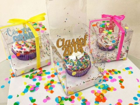 Individual cupcake box