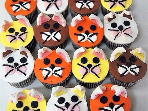 Cat Cupcakes themed
