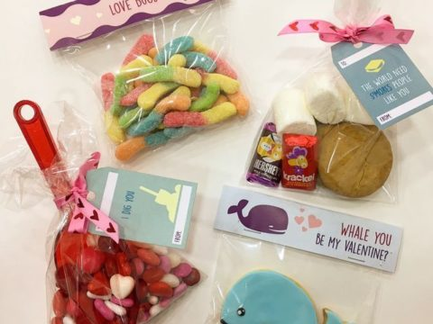 Valentine candy packs